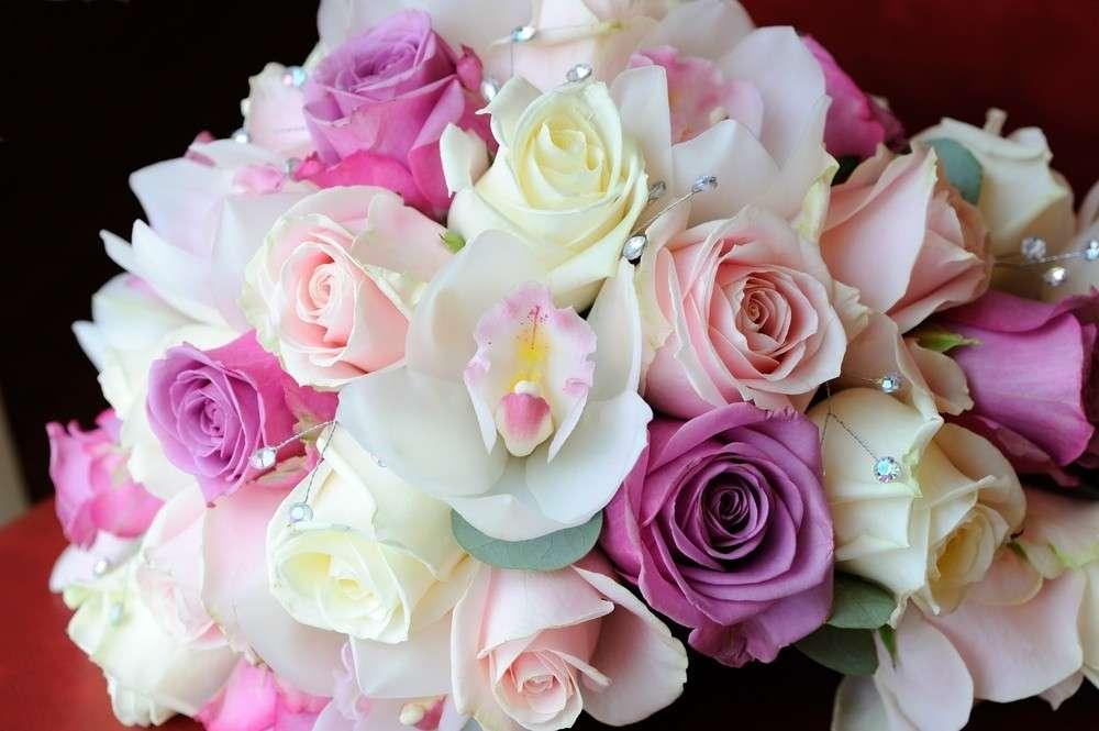 Saisonblumensind leicht zu erhalten, und oft bei sehr guter Qualität preiswert.