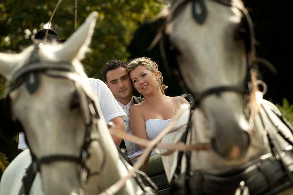 Kutsche statt Hochzeitsauto